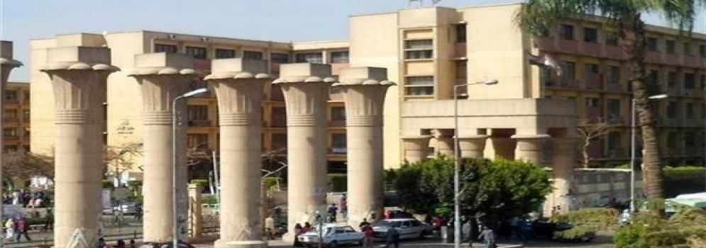 Increasing the insurance benefit of the fellowship fund for faculty staff members at Ain Shams University